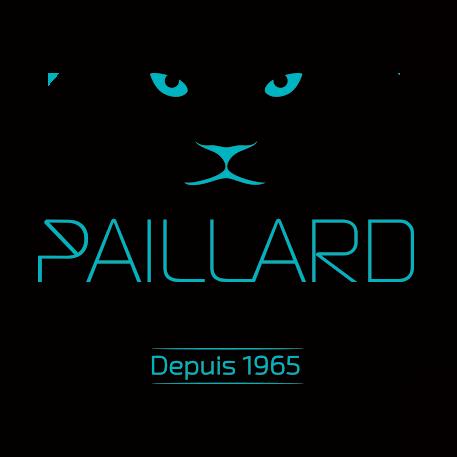 PAILLARD Peinture